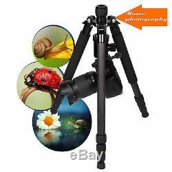 Pro Portable Z818C Carbon Fiber Tripod Travel Monopod Ball Head for DSLR Camera
