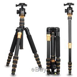 Q666C Portable Carbon fiber Ball Head Tripod for DSLR Camera Fold 35cm Traveling
