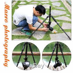 Zomei Z669C Travel Carbon Fiber Tripod Monopod + Ball Head for 15KG DSLR Camera
