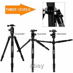 Zomei Z818C Portable Carbon Fiber Tripod Stand With Ball Head For Sony Camera